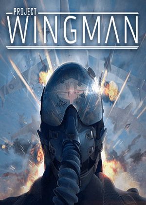 Project Wingman Trainer